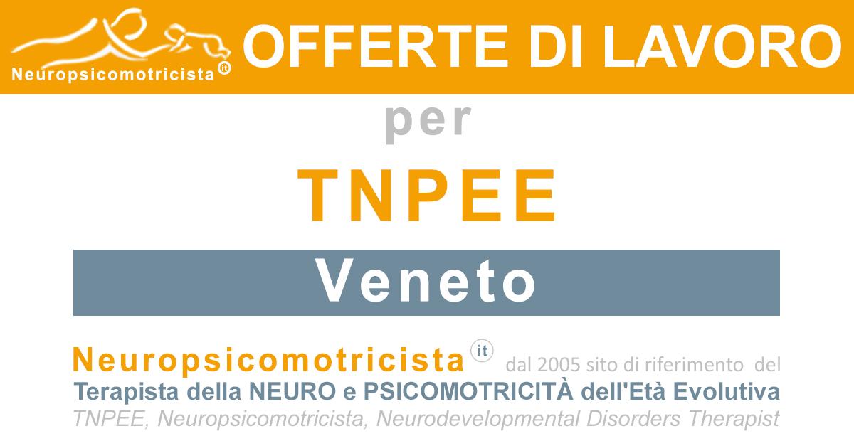 Offerte Di Lavoro A Venezia Www Neuropsicomotricista It